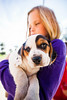 Holly (Thomas Hawk) Tags: america byron byronhotsprings california holly usa unitedstates unitedstatesofamerica beagle dog puppy fav10