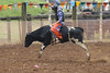 343A7175 (Lxander Photography) Tags: midnorthernrodeo maungatapere rodeo horse bull calf steer action sport arena fall dust barrel racing cowboy cowgirl