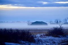 Blue Hour (faithroxy) Tags: mist fog foggy alberta nisku farm canada field bluehour sky winter landscape nikon snow seasons weather shed rural