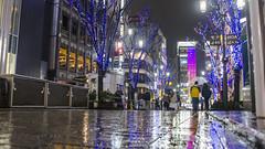 Tokyo, Japan (Tatu234) Tags: tokyo japan nippon winter 2018 january february amateur photography photographer photograph photooftheday potd sony dslr camera city cityscape beautiful building