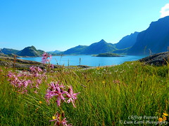 Clifftop Pastures (liamearth) Tags: earth shore sky clouds mountain sceneic wilderness beautiful sea view outdoor water western landscape wild lofoten norway arctic circle traveling real life camping serene mountainside still clear texture contrast ocean cliff bay beach colour blue vestvågøya sortland unstad mærvoll rock flowers grass green clifftop pastures field