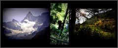 ce petit ami doit être sous la neige ! (Save planet Earth !) Tags: zermatt suisse amcc montagne mountain travel voyage