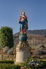 Madonna mit Weltkugel - St. Martin (tucsontec) Tags: trekking wandern madonna holy heilig rheinlandpfalz pfalz wineyards weinberge statue heaven bluesky himmel winter cold colours colour