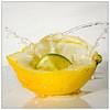 A Citrus Drop (EddieAC) Tags: macromondays citrus lemon lime splash drop water macro