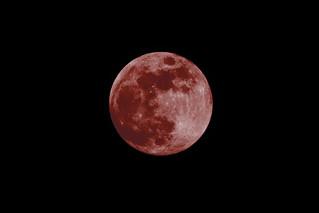Blood moon concept