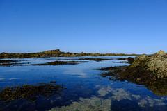 Rockpools (zassle) Tags: beach coastal landscape rockpools scenery camera:make=fujifilm geocountry geocity geostate exif:lens=xf18135mmf3556rlmoiswr exif:focallength=18mm camera:model=xpro2 exif:aperture=ƒ10 exif:isospeed=200 exif:make=fujifilm geolocation exif:model=xpro2