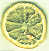 Lemon (photonicpainter) Tags: lemon citrone citroen fruit fruits yellow million billion