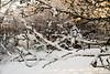 20180118,19 Snö! (Sina Farhat - Webcoast) Tags: light ljus winter vinter snow snö home hemma cold kallt white vit 2018 january januari garden trädgård gothenborg göteborg sweden sverige 031 bokeh skärpedjup canon50d canon3580456 raw photoshopcc