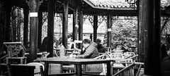 Tea Time - Chengdu, China (成都, 中國) (dlau Photography) Tags: chengdu china 成都 中國 teatime tea 下午茶時間 時間 下午茶 下午茶时间 时间 snacks 小吃 peanuts 花生 crackers 餅乾 饼干 travel tourist vacation visitor people lifestyle life style sightseeing 游览 遊覽 trip 旅遊 旅游 local 当地 當地 city 城市 urban tour scenery 风景 風景 weather 天氣 天气 中国 leisure 休闲 休閒 monochrome 單色 单色 black white blackandwhite 黑白 黑 白