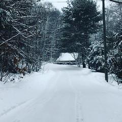 Winter Road. (Sofie Lasiuk) Tags: ontario canada 2018 baysville grandviewlake lakeofbays muskoka