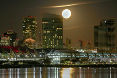 Glimpse of the super moon (Karon Elliott Edleson) Tags: sandiego coronado sandiegobay highrises condos hotels waterfront supermoon americasfinestcity downtown