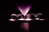 purple fountain (In Explore) (remiklitsch) Tags: fountain night longexposure purple garden santamonica nikon remiklitsch city urban downtown