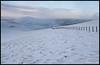 Chapelgill Hill (Gareth Harper) Tags: culter fell 2454ft 748m gd18 gg9 chapelgill hill 2283ft 696m gd22 graham donald donalds scottish walking lanarkshire scotland 2017 photoecosse