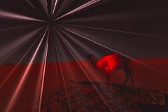 midnight (por agustinruizmorilla) Tags: sunset dusk dawn evening dramatic sky silhouette twilight sunrise sun backlit moody moon desierto desert fantasy night fantasia noche agustin ruiz morilla