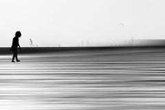 matalascañas (mesana62) Tags: backlight black bokeh blancoynegro woman water beach cylon13 creative light spain silhouette girl huelva photography andalucia atardecer atlantico abstract sunset seville