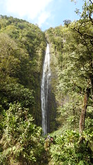 Journey to the 400 foot Waimoku Falls (Jim Mullhaupt) Tags: kipahulutrail waimokufalls 400fthigh hike hiking trail maui hawaii pacificocean beach island southpacific surfing surf vacation holiday travel usa family kids jimmullhaupt surfers waves boating coral volcano exotic wallpaper clouds sky mountains landscape water waterfalls photo flickr geographic picture pictures camera snapshot photography nikoncoolpixp900 nikon coolpix p900 nikonp900 coolpixp900