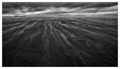 Norderney - Against the wind (Wayne Interessiert's) Tags: norderney island insel île ocean sea mer dünen sanddunes éoliennedunes sturm storm tempête landscape paysage wolken clouds nuages sky ciel monochrome bw blackwhite noirblancphoto minimalismus minimalisme fujiflim