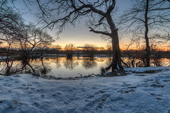 Snowy Dusk (Rob Pitt) Tags: rivacre valley england uk sunset pump pit wirral water reflection rob pitt river landscape tree sky wood lake serene 750d tokina 1116 snow