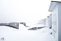 Plage de Calais - Mars 2018 (Fabien Legagneur) Tags: plage calais neige cold côtedopale hautsdefrance lumix lumixtz100 panasonic paysage ciel
