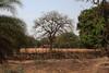 IMG_1757a (sensaos) Tags: india sensaos travel chhattisgarh 2013 asia