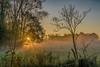 Morgennebel - morning mist (ralfkai41) Tags: bäume sun dämmerung nebel landschaft sunrise sonne dawn trees sonnenaufgang fog mist nature natur landscape ngc