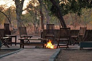 Zimbabwe Cape Buffalo Hunt 78