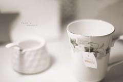 Take a moment (pierfrancescacasadio) Tags: caffè gennaio2018 23012018840a4852 takeamoment lifeisarainbow white 452 tea teacup mug ivy