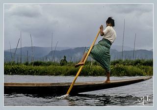 Une façon de pagayer originale / A way of paddling eccentric - Lac / Lake Inle - Birmanie / Burma (1987)