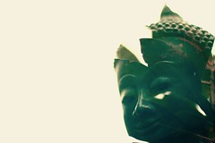 Buddha Double Exposure (pinto855) Tags: leaves plant yellow black portrait statue red green doubleexposure exposure double canon80d canon buddha