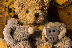 Three Small Soft Toys (alison's daily photo) Tags: threesmallsofttoys flickrfriday threesacrowd 7dwf closeup 52in2018challenge 3752three three