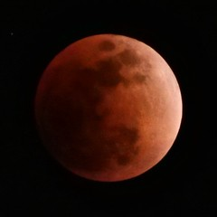 P1010506 (digitalbear) Tags: total lunar eclipse seen from tokyo japan panasonic lumix g9 pro gvario 45200mm f456 powerois