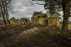 A Venerable Place (explored) (Chris-Henry) Tags: derelict ruin countydown ireland northernireland house home wreck interest interesting moss ivy imposing