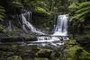 Horseshoe Falls (simongleeson) Tags: waterfall tasmania rainforest water