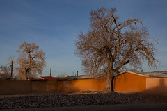 (el zopilote) Tags: albuquerque newmexico cityscape street architecture powerlines trees canon eos 5dmarkii canonef24105mmf4lisusm fullframe