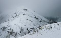 Summer in the Alps (Netsrak) Tags: alpen europa kleinwalsertal landschaft natur nebel schnee wald fog mist snow