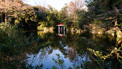Omiya Hikawa jinja bridge (tokyobogue) Tags: japan saitama omiya nikon nikond7100 d7100 sigma sigma1750mmexdcoshsm hikawajinja omiyahikawajinja hikawashrine omiyahikawashrine shrine jinja pond bridge reflection trees water red green