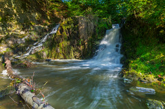Etang et cascade de Blangy (David Hédin) Tags: 02 2012 aisne etangetcascadedeblangy nature hirson