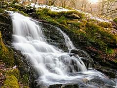 Highland Spring. (Flyingpast) Tags: waterfall cascade pretty nature walk moness glen aberfeldy perthshire scotland spring beautiful moss water