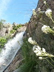 waterfall outside Tulbagh, Western Cape