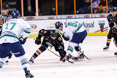 """Kansas City Mavericks vs. Florida Everblades, February 18, 2018, Silverstein Eye Centers Arena, Independence, Missouri.  Photo: © John Howe / Howe Creative Photography, all rights reserved 2018 • <a style=""""font-size:0.8em;"""" href=""""http://www.flickr.com/photos/134016632@N02/40387903391/"""" target=""""_blank"""">View on Flickr</a>"""