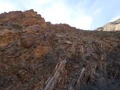 P1270564 (Dr. Fieldgood) Tags: anza borrego california camping amber larry amy desert