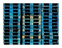 Colorful wooden pallets (moniquevantorenburg) Tags: pallets wood woodenpallets colorful olympusomdem5markii olympus4015028pro m43 mft microfourthirds repetition interplayoflines lines lijnenspel herhaling blue hout houtenpallets