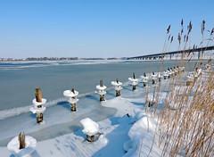 winterimpressionen (Wunderlich, Olga) Tags: eis stralsund strelasund holzbuhnen deu schilf rügenbrücke alterfähr blau