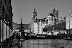 The 3 Graces from Albert Dock (robin denton) Tags: liverpool waterfront albertdocks thethreegraces liverbirds unescoworldheritagesite unesco worldheritagesite buildings listedbuilding merseyside dock monochrome bw black white