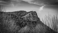 A Moment of Silence (writing with light 2422 (Not Pro)) Tags: rattlesnakeledge bw blackandwhite monochrome landscape richborder sonya7 vignette