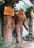Bigfoot - Newport, Oregon (Vintage Roadside) Tags: vintageroadside bigfoot sasquatch newport oregon oregoncoast ripleys believeitornot roadsideattraction
