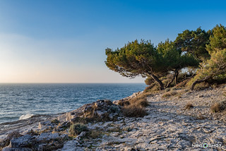 Stoja beach