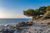 Stoja beach (NRG SHOT) Tags: pula pola croazia croatia hrvatska istria istra adriatico adriatic stoja scogli nrgshot nikon d600 roccia oceano mare cielo acqua tramonto baia paesaggio spiaggia onda costa natura nature tree panorama