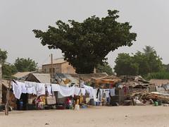 SenegalFromDeltaSaloumToMbour020 (tjabeljan) Tags: mbour moskee mosque termite termiet boabab senghor senegal africa afrika