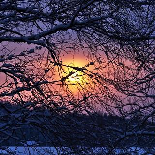 100mm sunset